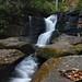 Cedar Rock Falls - N.C.
