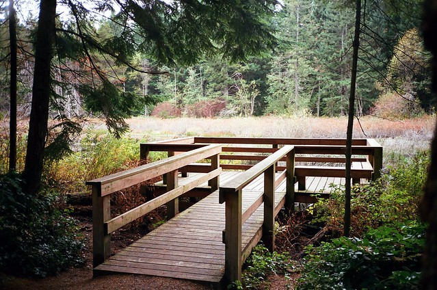 Oliver woods duck pond viewing platform yashica t4 compa for 7194 garden pond