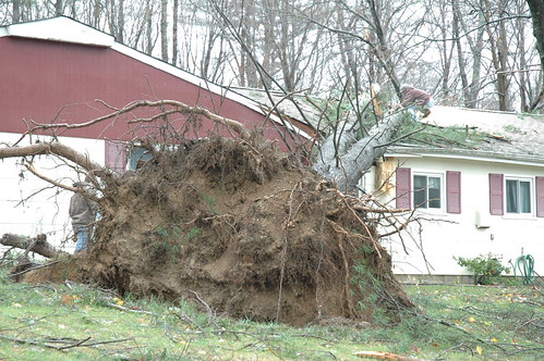 Hurricane Sandy drops tree onto home in West Milford, N.J. | by Jai Agnish