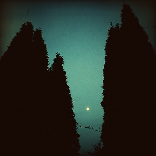 morningmoon | by lucy.loomis