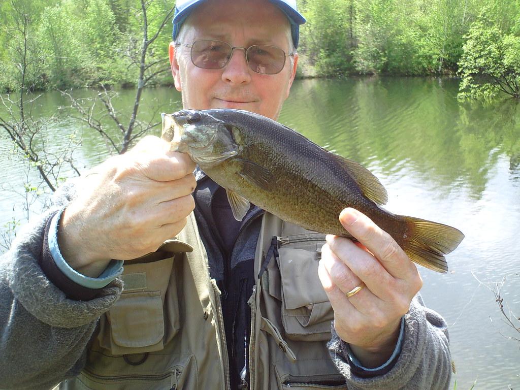 Fly fishing a smallmouth bass pond fishing smallmouth for Fly fishing for smallmouth bass