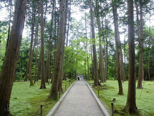 jp16-Nara-j2-Toshodaiji (8)