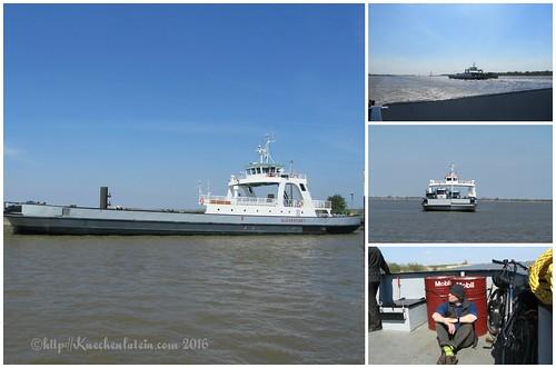 Sommer 2016 Kreuzfahrt über die Elbe