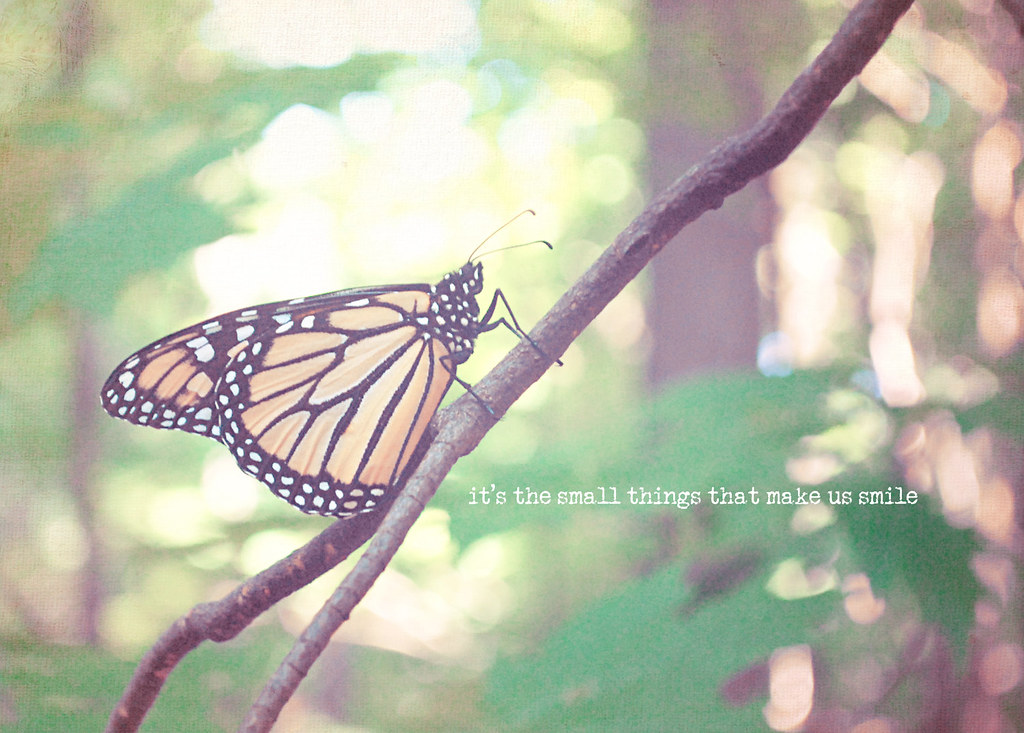 Monarch Butterfly Smile Quote Shabby Chic Vintage Easter S ...