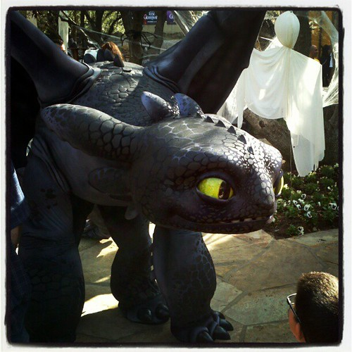 Toothless visits DWA or you wish your costume was this awesome. | by ... Costumes