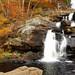 Devil's Hopyard State Park, Champman Falls, East Haddam CT