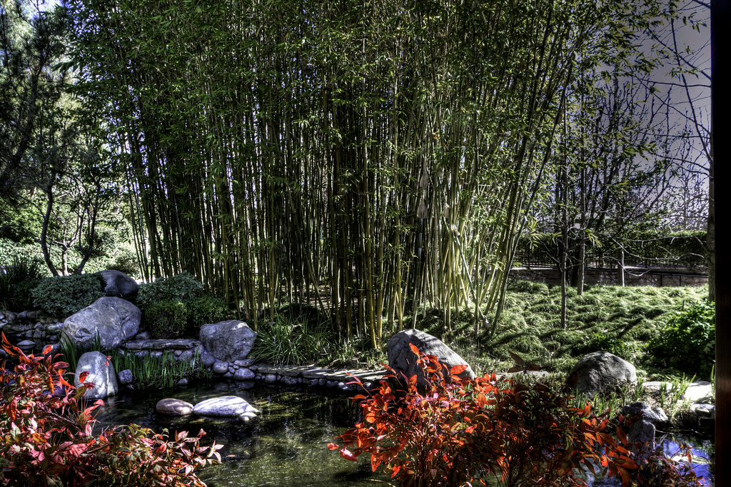 Gardens of the world thousand oaks grove of bamboos tony medina flickr for Gardens of the world thousand oaks