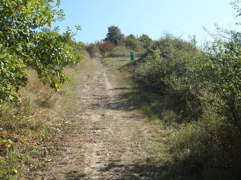 Nitteler Felsenweg