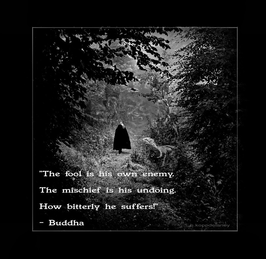 Buddha Life Quotes Buddha Quote 99  This Is The 99Th Of 108 Buddha Quotes  …  Flickr
