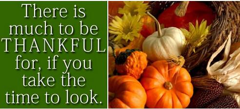 pumpkins thanksgiving