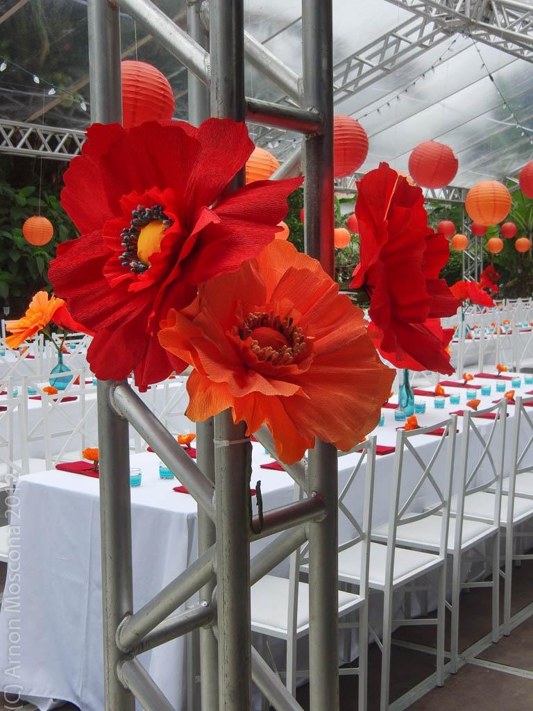Cimg1743 Jpg Wedding And Event Coordinator And Designer