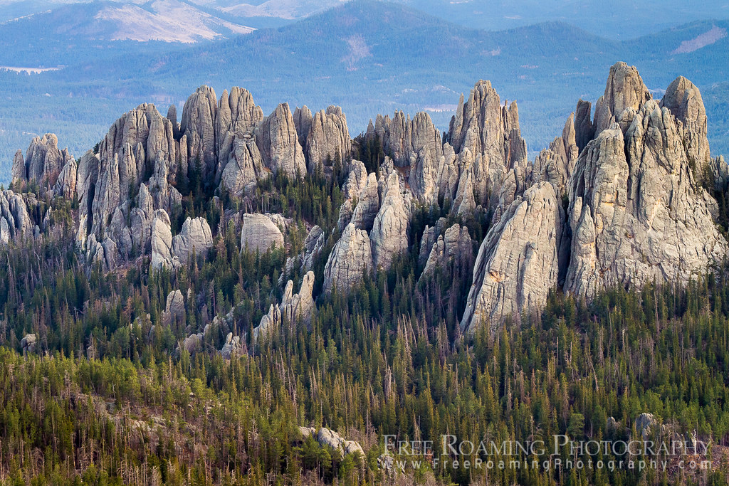 Cathedral Spires In The Black Hills The Cathedral Spires