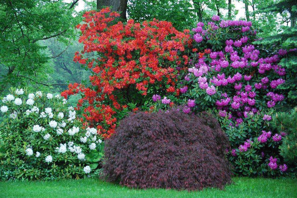 Chestnut Hill Gardens Litchfield Ct Bronwyn Ronnie And Flickr