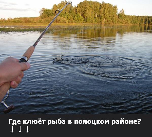 рыбалка в полоцком районе