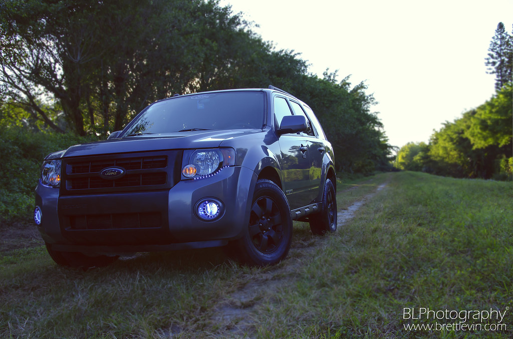 2008 Ford Escape Limited Sport Took Some Pictures Of My
