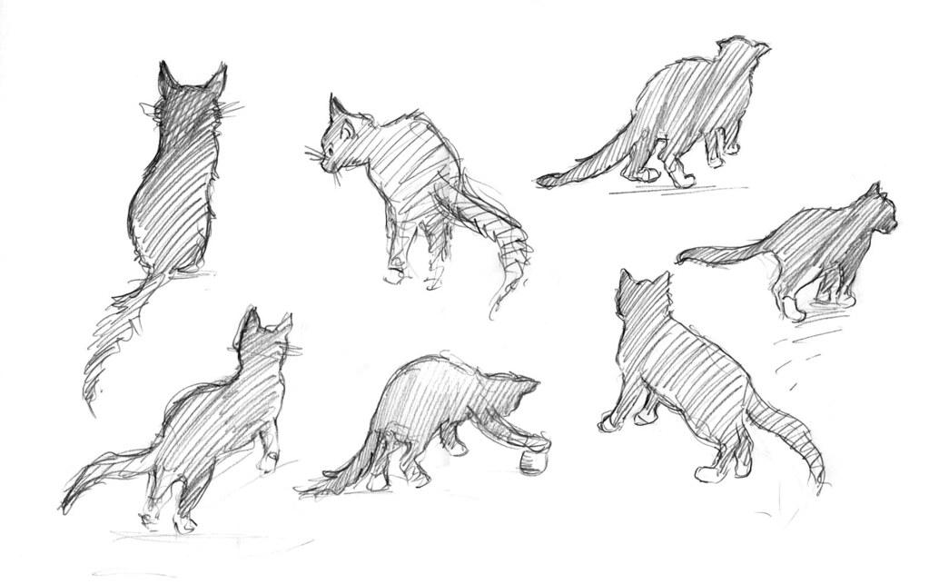 cat sketches 1 hazelmitchell com hazel mitchell flickr