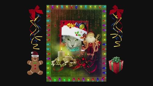 Megumi's Award Winning Christmas Show