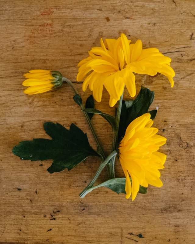 yellow flowers on desk