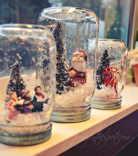 No Water Snow Globes | by jennyonthespot