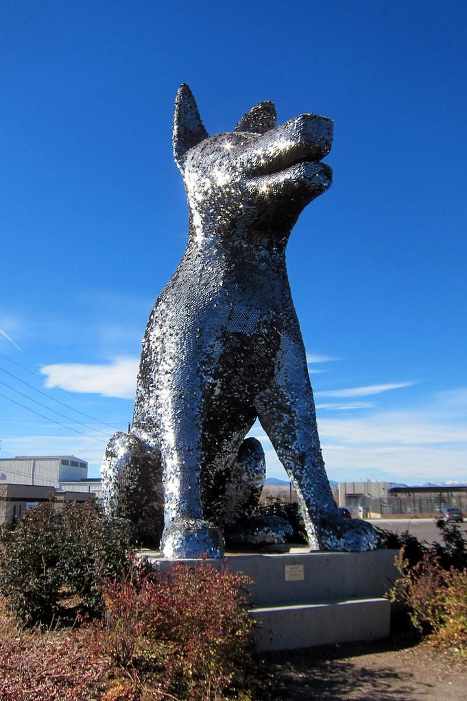 Denver - Valverde: Denver Animal Shelter - Sun Spot   Flickr