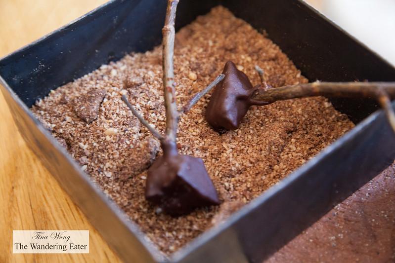 Petit fours of smoky chocolate