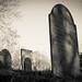 Concord, MA cemetery (Project 365: 253/365)