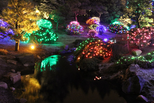 Denver Botanic Gardens Blossoms Of Light December 8