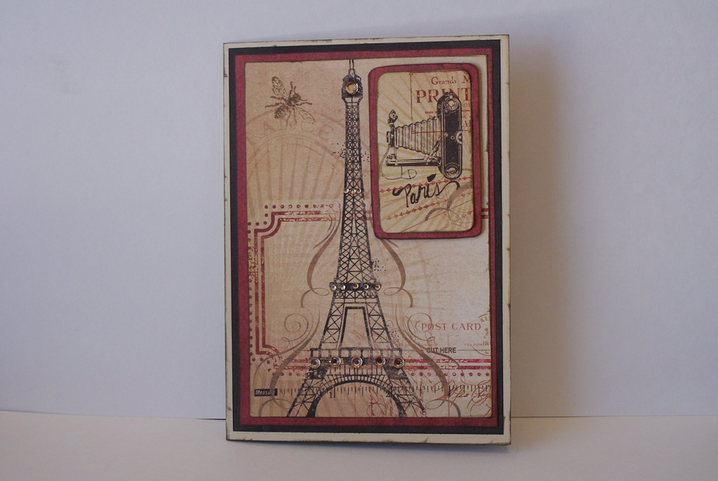 Birthday Card For Photographer Dil Sony Dsc Prairie Thistle Flickr