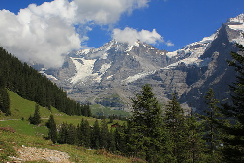 Hiking from Kleine Scheidegg to Wengen. | by pixelshoot