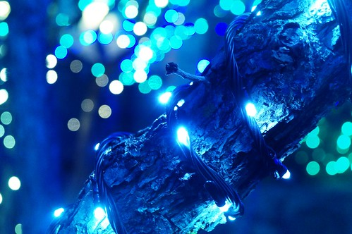 Christmas Tree Lights Pictures