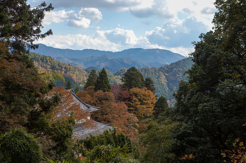 On top of Mount Kurama | by pamhule