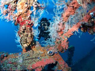 Nagano Maru Wreck