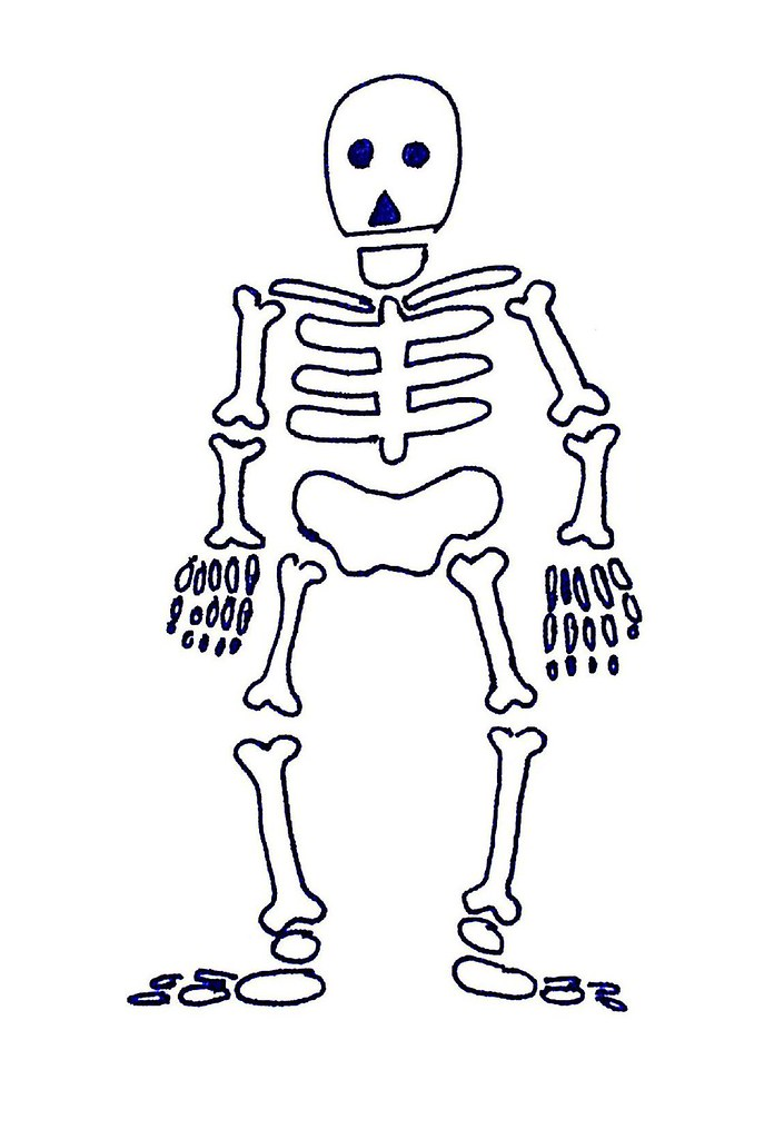 Skeleton | A drawing of a skeleton. I use this when I want ...