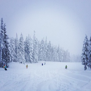 Forget fighting for Boxing Day deals - there's powder for everyone! | by fog and swell