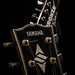 016 - Guitars