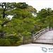 Kyoto 534
