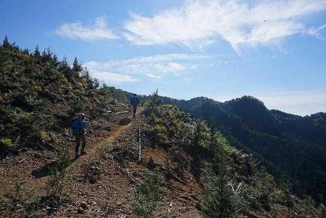 古賀志山 開放的な登山道