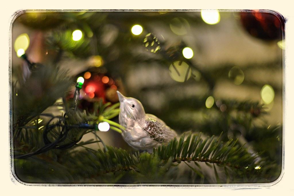 Bildergebnis für bild gesegnete weihnacht