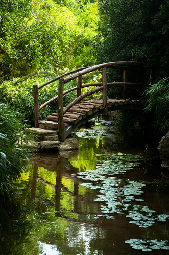 Little Bridge Zilker Park Botanical Garden Austin Texas Raspberrytart Flickr