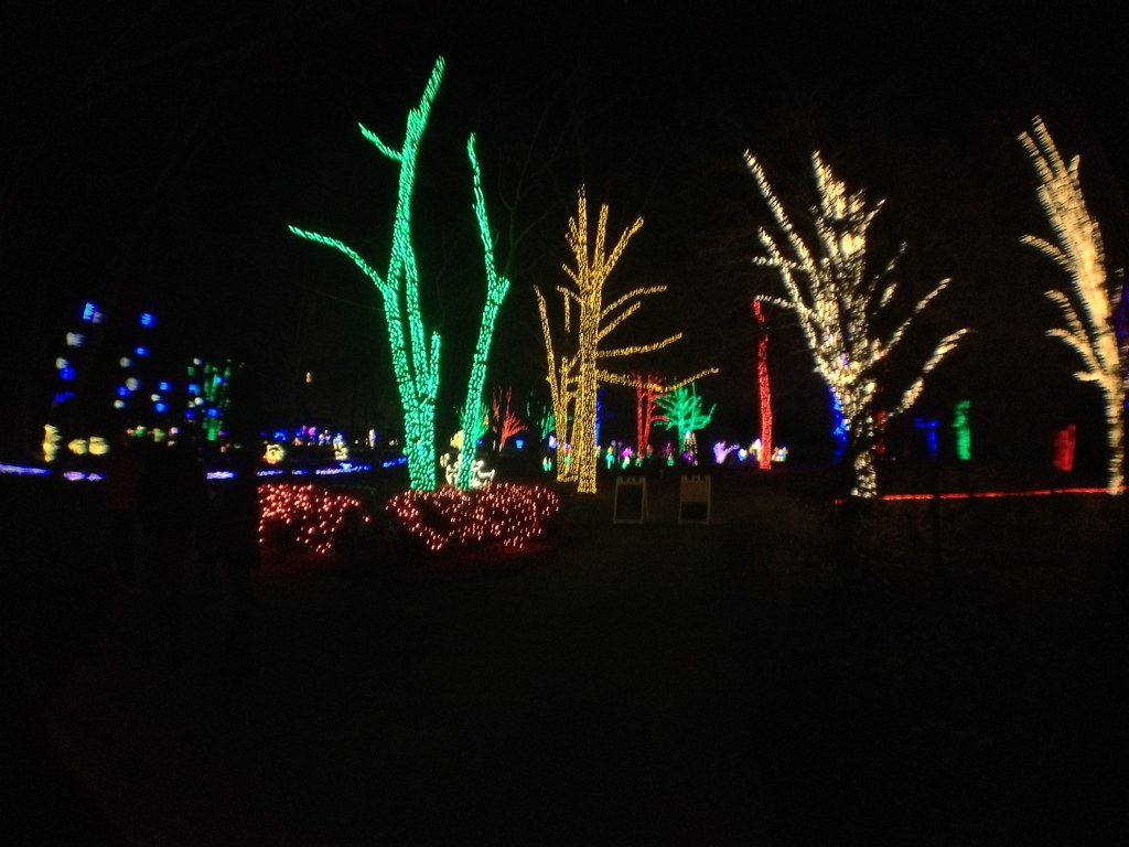 Meadowlark Gardens Winter Walk Of Lights Ahson Wardak