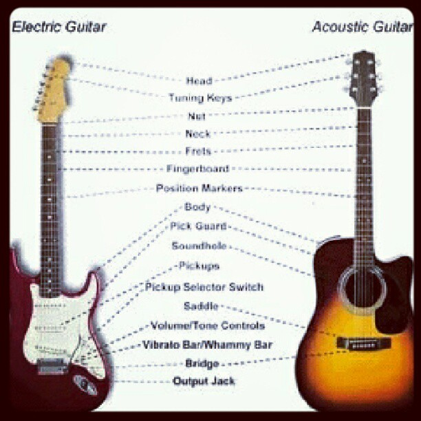 Differences And Similarities Between An Acoustic Guitar An Flickr
