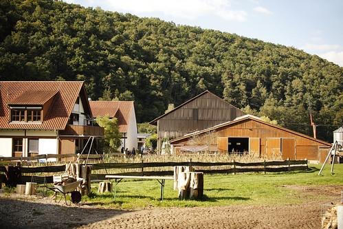 Gelebte Inklusion auf Demeter-Kleinsägmühlerhof unterstützen