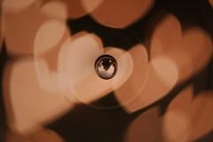 Bibio's Mind Bokeh Vinyl
