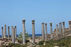 Leptis Magna (71)