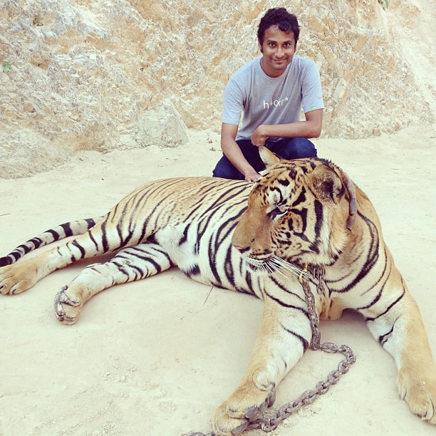 Richard parker wishes season 39 s greetings tiger denzil for Who is richard parker