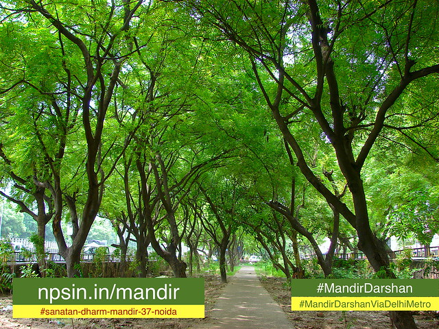 A half km long road side green belt / area while walking through golf course metro station towards temple.