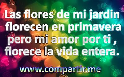 Frases Bonitas Para Dedicar A Tu Amor Descarga Esta Imagen Flickr