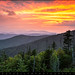Clingmans Dome Great Smoky Mountains - Purple Mountains Majesty