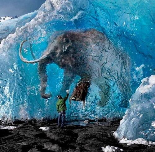 Amazing Pictures: Pinterest.com/pin/199354720977363282