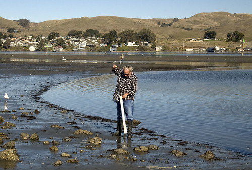 bodega bay guys To fully enjoy scenic bodega bay in california, we highly recommend the area's only aaa four-diamond resort, the bodega bay lodge and spa.